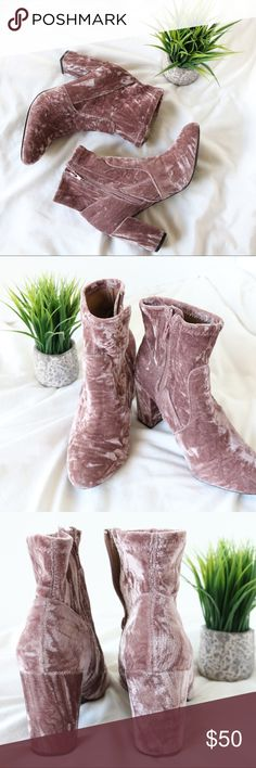 """😍NWOB! Steve Madden Crushed Velvet Bootie 💕 Brand New! Steve Madden """"Gaze"""" Bootie Size 8 Never worn No box/no tags Crushed velvet Pinkish purple color  3-3.75 inch block heel Inside zipper Round toe  Only wear is to bottoms from in-store try-ons  Perfect for spring! 😍🌷💕  💜 My home is smoke and pet free Steve Madden Shoes Ankle Boots & Booties"""