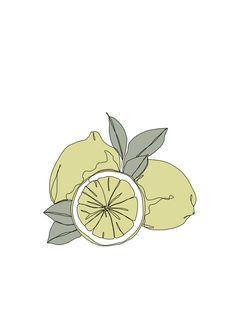 Botanical fruit illustration line drawing - Lemons Framed Art Print by The Colour Study - Vector Black - MEDIUM Contour Line Art, Contour Drawing, Aesthetic Drawing, Aesthetic Art, Lemon Drawing, Lemon Art, Botanical Line Drawing, Fruits Drawing, Textile Pattern Design