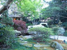Zen Garden at Grand Hyatt Atlanta in Buckhead