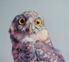 I want each and everyone of these owl paintings by John Pusteri.