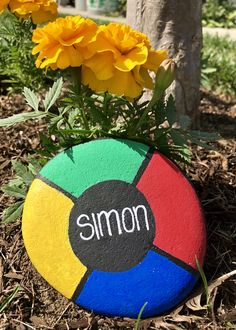 Painted Rock Simon