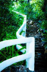 Green & White. By J. Sanchez (jmsanchez94) Tags: panama panamá lasvegasnevada contadora saboga sonya99