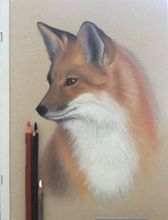 Art Drawings, Fox, Animals, Animales, Animaux, Foxes, Animal, Animais, Art Paintings