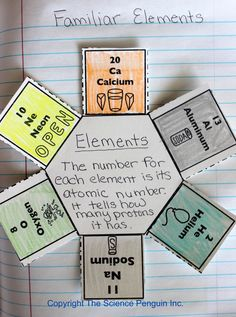 Interactive Science Notebook Ideas and Photo Gallery