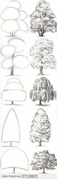 Drawing Tips Tree Drawing Tutorial. Start with basic geometric shapes. Pencil Art Drawings, Art Drawings Sketches, Easy Drawings, Tree Drawings, Drawing With Pencil, Easy Sketches To Draw, How To Sketch, Things To Sketch, Basic Drawing For Kids