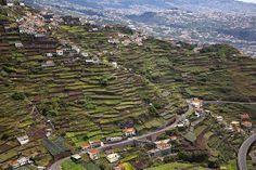 Estreito de Câmara de Lobos - Madeira Island, Portugal