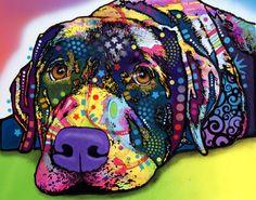 """""""SAVVY"""" (Labrador) by Dean Russo"""