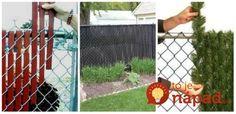 Škaredý plot z drôteného pletiva nemusíte meniť: 11 fantastických nápadov, ako ho šikovne zakryť a skrášliť vašu záhradu! Backyard Projects, Exterior Design, Fence, Projects To Try, New Homes, Pergola, Home And Garden, Outdoor Structures, Gardening