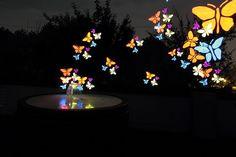 LightPainting Stencil Pochoir Papillons
