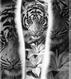 Design ready to grab forearm Or calf @purplerosebristol #tiger #tattoo #lilly #flower