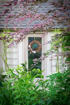 View through the Tri-colour Beech - Blossom Garden Blossom Garden, Arch, Bloom, Outdoor Structures, Colour, Places, Color, Longbow, Wedding Arches