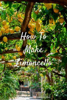 How to make limoncello Limoncello recipe I Campania I Italy