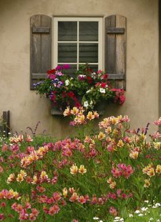 CARMEL'S COTTAGE GARDENS. California. like the size of the shutters and flower box proportions