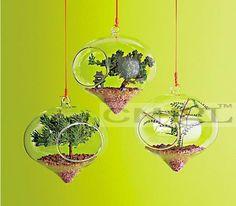 6pcs/set onion shape garden ornaments,outdorr plants succulent bonsai,hanging bonsai terrarium for garden decor,home decor #Affiliate