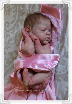 HBN* Art Dolls Presents Reborn Baby AMAZING Ashton Drake *Bundle of Love