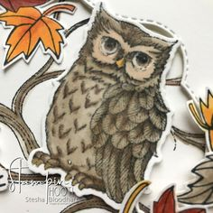 Shop online for Stampin' Up! Products from Stesha Bloodhart, Stampin' Hoot! Only a few more days to purchase the Blended Seasons Bundle! Fall Cards, Christmas Cards, Horse Cards, Owl Card, Coloring Tips, Owl Punch, Bird Cards, Night Owl, Thanksgiving Cards