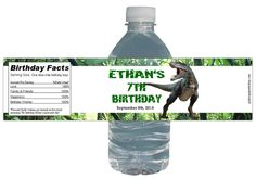 Dinosaur Party 15ct Waterproof Bottle Labels by PinkSugarPartyShop, $11.25