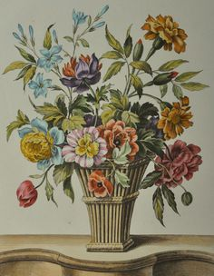 Fine Century Hand Colored Etching by French Artist Louis Tessier - Botanical Drawings, Botanical Illustration, Botanical Prints, Victorian Curtains, Illustration Botanique, Still Life Art, Bunch Of Flowers, French Artists, Woodblock Print