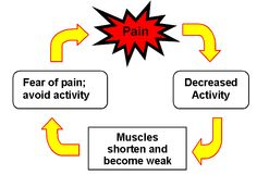The vicious cycle of back pain...