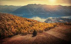 Download wallpapers Lake Maggiore, Alps, mountains, autumn, mountain landscape, yellow forest, Ticino, Locarno, Switzerland