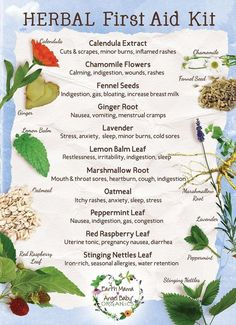 Herbal First Aid Kit #healing #naturally