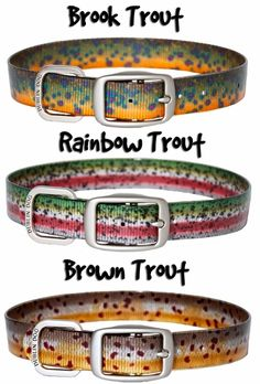 Dog Fishing Themed Collars | Dublin Dog KOA Trout Pattern Collection Waterproof No Stink Collars