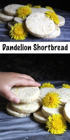 Dandelion shortbread cookies add a bright, sunny spring twist to an old school classic. Shortbread is rather plain on its own, but it's also adaptable, and adding edible flowers is a lovely way to add a bit of excitement. Dandelion cookies anyone? Baking Recipes, Real Food Recipes, Cookie Recipes, Dessert Recipes, Shortbread Recipes, Shortbread Cookies, Dandelion Recipes, Food And Drink, Cooking Tips