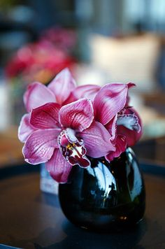 A black vase shows off these purple orchids' saturated hue.