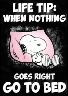 Snoopy Charlie Brown meme Oh yeah. That's good advice. My kind of way to deal with nothing going right. Peanuts Quotes, Snoopy Quotes, Snoopy Love, Snoopy And Woodstock, Peanuts Cartoon, Peanuts Snoopy, Funny Quotes, Life Quotes, Funny Memes