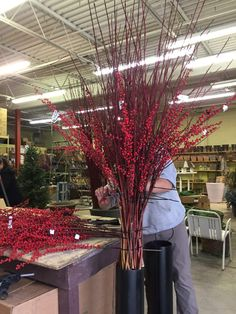 Our second winter/holiday project comes with a story, just like our first. If you were to ask how I schedule all the work, I am sure I would hesitate before I answered. There are many factors, some… Outdoor Christmas Planters, Christmas Urns, Christmas Greenery, Christmas Arrangements, Outdoor Christmas Decorations, Christmas Centerpieces, Winter Christmas, Christmas Home, Branch Centerpieces