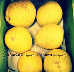 pomelo - φράπα - πόμελο - κυπριακή διάλεκτος - ελληνικά