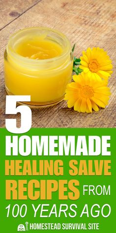 Learning how to heal your injuries with herbs and other items is a fundamental skill for any homesteader or prepper. So, let's dive into what you need to know about healing salves. #diy #salves #remedies #homemade #natural