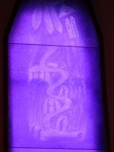 última dos violetas | by Fabio Panico