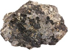 Pegmatitic metagabbro in which pyroxene has been altered to hornblende. The Seiland igneous province. Width of sample 9 cm.