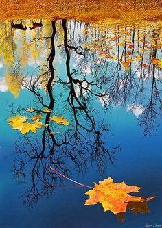 Autumn Reflection by Igor zenin