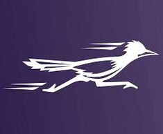 Image result for Road Runner Bird Stencil