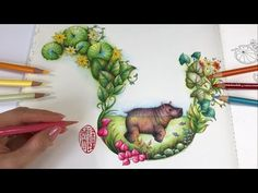 Baby Hippo | Magical Jungle Coloring Book - YouTube