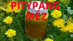 Gyógynövények. Pitypang méz készítése-Ehető virágok videó. Coors Light, Light Beer, Coca Cola, Beverages, Canning, Youtube, Coke, Drinks, Youtubers