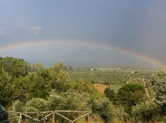 After the rain, there is a rainbow! Vineyard, Herbs, Rainbow, River, Flowers, Gardens, Rooms, Outdoor, Quartos
