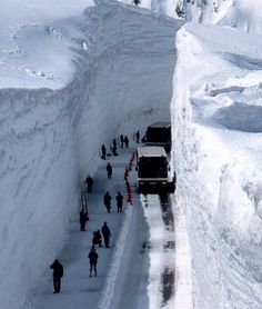 Image result for alaska snow road picture