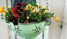 ¿Te gustan las plantas y quieres decorar con ellas tu hogar, pero no se te ocurre cómo hacerlo? Pues no pierdas detalle de la propuesta decorativa que te o