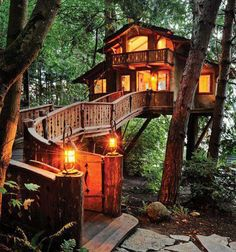 wow, I would love to live in the Treehouse