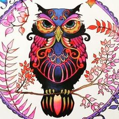 Owl Enchanted Forest. Coruja Floresta Encantada. Johanna Basford: