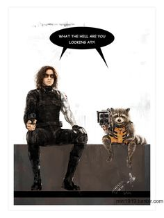 """Bucky and Rocket: """"What the hell are you looking at?"""" Posted on Tumblr.com by min1919."""