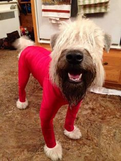 red jammies!
