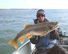 Facts About the Life and Behavior of Lake Trout: An over 30-pound lake trout from Lake Athabasca, Saskatchewan.