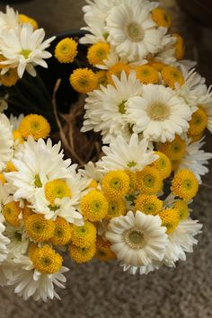bridesmaids bouquets, white daisies  yellow buttons wrap in raffia (1) white or yellow gerber center. #6 and #1 jr bridesmaid