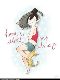 Home is where my cats are. ♥