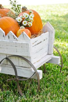 Honey We're Home: Fall Decor : Pumpkins, Flowers and Baby Breath