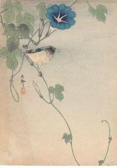 """Finch and morning glory"", Koson (Hoson) Ohara (1877-1945) - 1920."